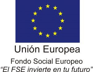 fse_logo